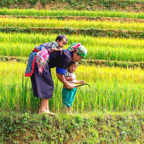 UN, Vietnam: A better justice system for the marginalized